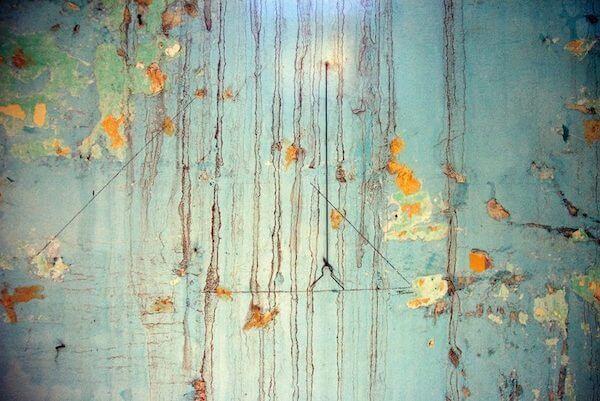 traces-Silvana-Agostoni